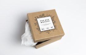 Cardboard Box PSD MockUp2